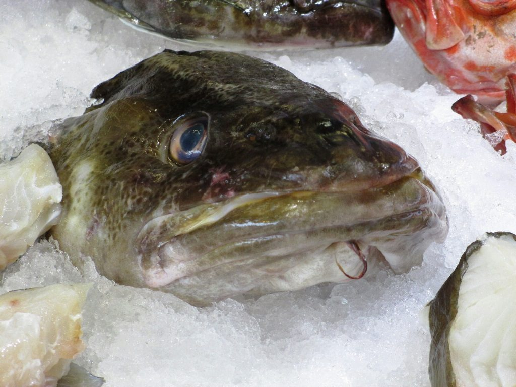 Fish for sale at Bergen Fish Market. Photo: Doug Tomren