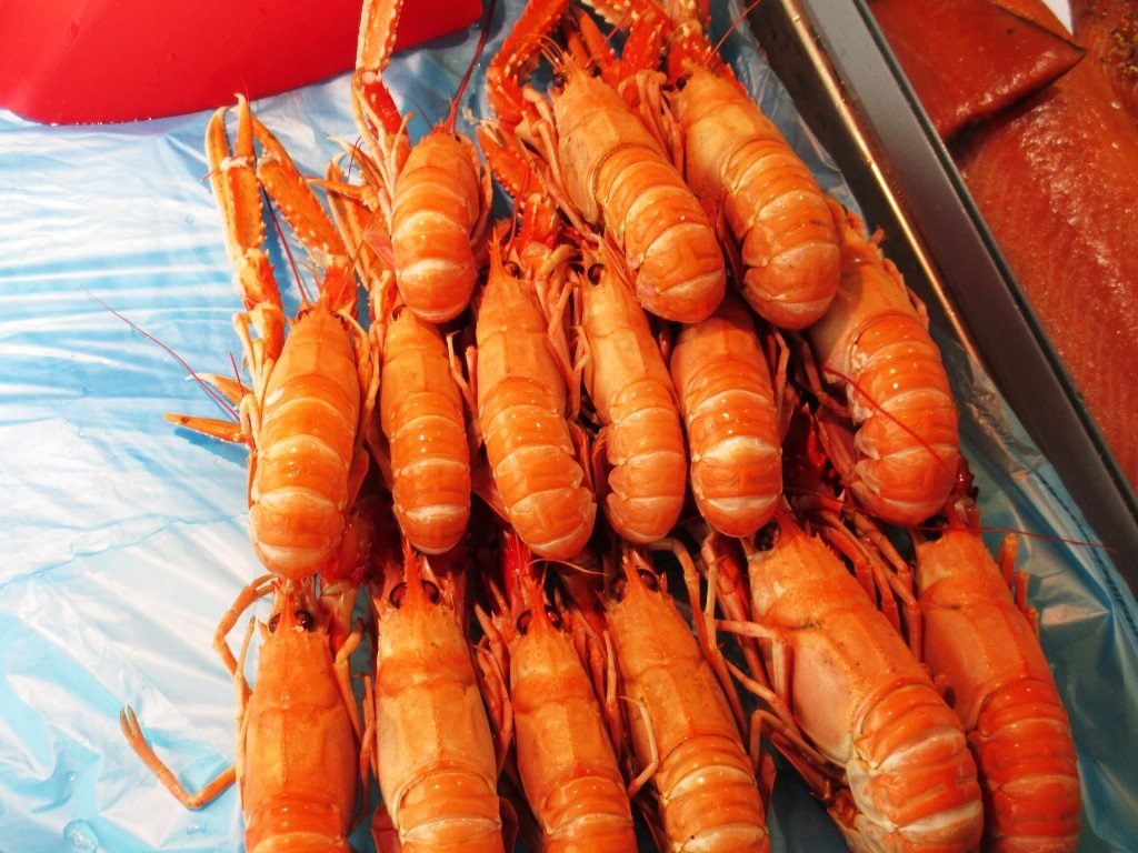 Langoustine at Bergen Fish Market. Photo: Doug Tomren