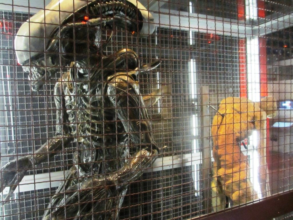Xenomorph alien from 'Alien'.