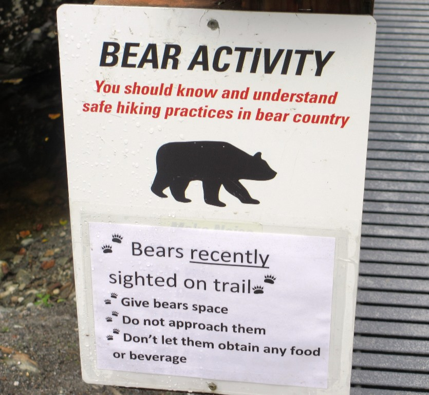 Beware of bears at Mendenhall